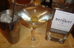 Scortching Dry The Botanist Islay Gin Martini